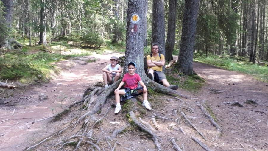 Enjoying the silence in Padis - Western Carpathians