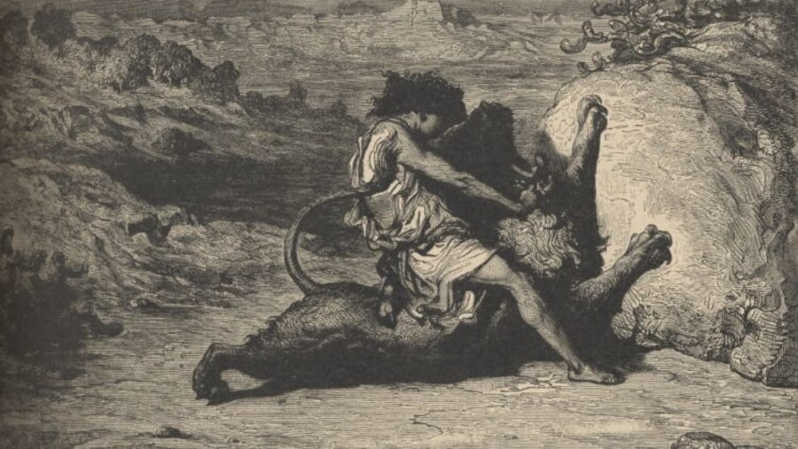 Samson killed the Lion with his hands.