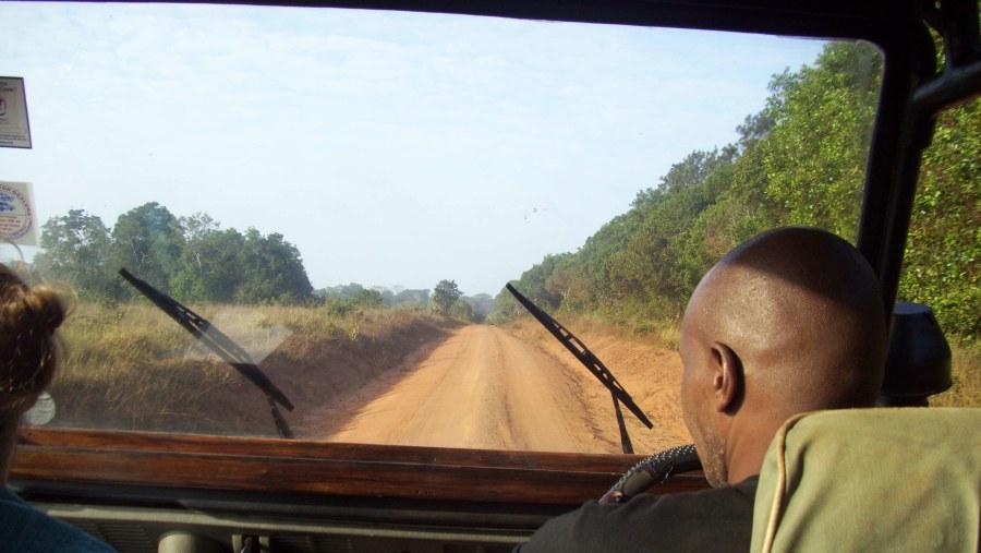 On Safari in Shimba