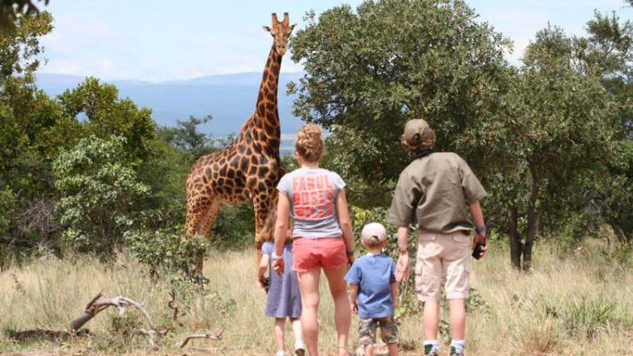 Family walking tour