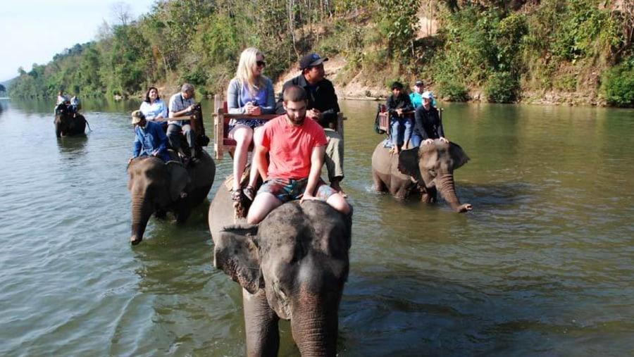 Elephant riding activity at Elephant Camp