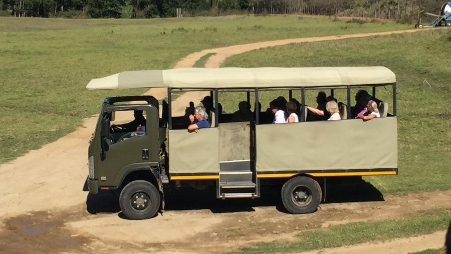 Game drive vehicle in Botlierskop Game Reserve