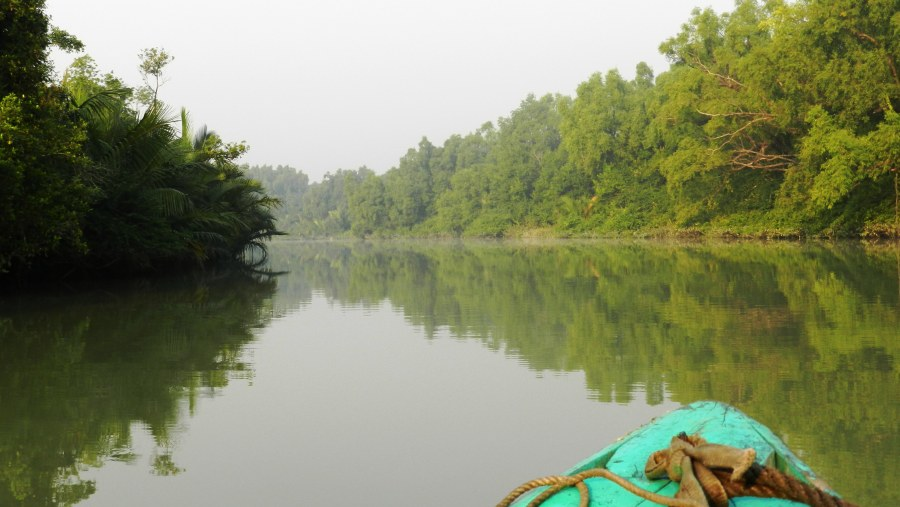 Big canal of Sundarban forest