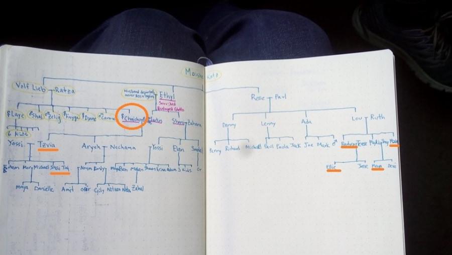 family tree development in progress