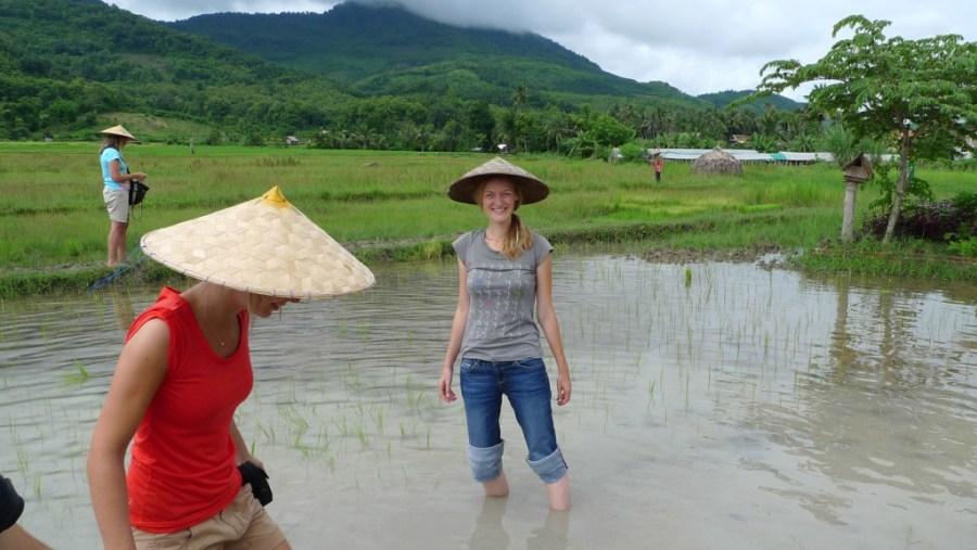 Rice farming experience