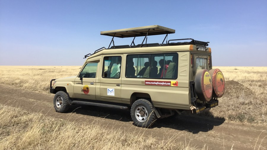Game drive in Serengeti National Park