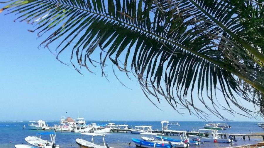 Puerto Morelos shore