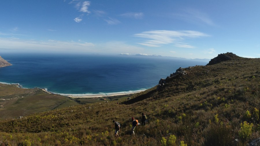 Steenbrass Moutain Trail
