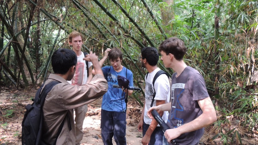 Lawachha rain forest