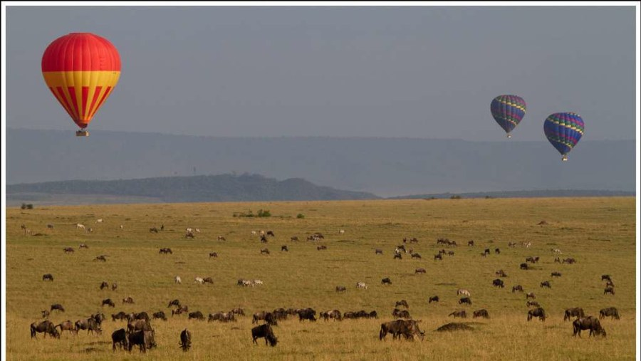 Baloon safari at the mara