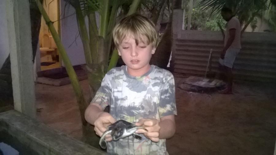 lnduruwa sea turtal project