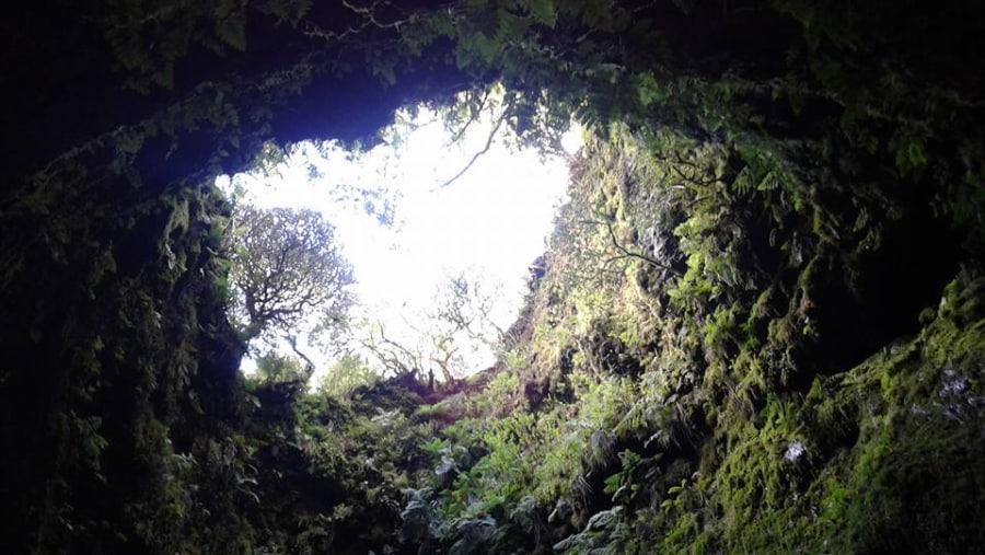 Down the rabbit hole (Algar do Carvão, Porto Judeu, Terceira)