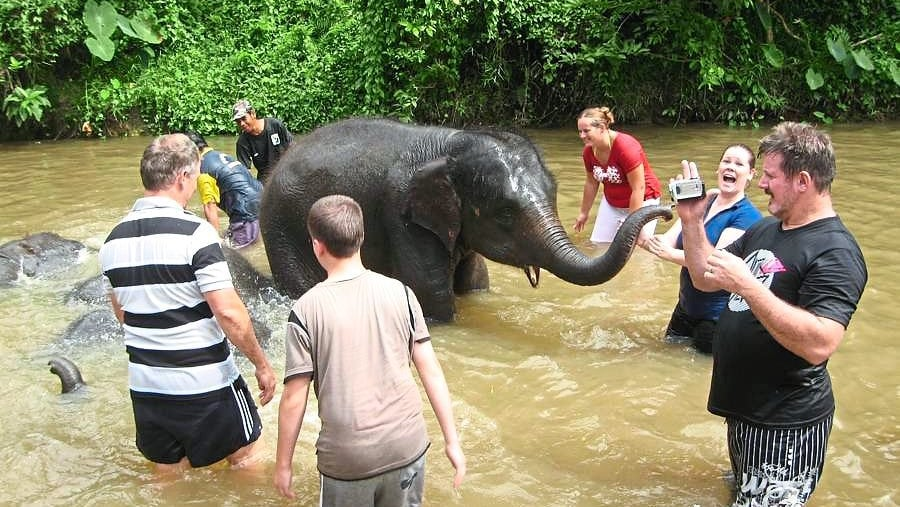 Bath with Baby Elephant in the river