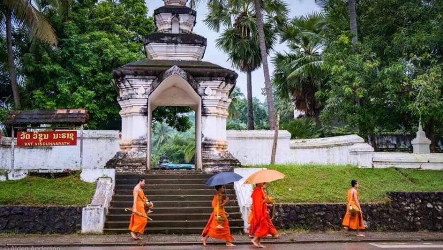 Monks walk back to their Monastery after collecting Alms given by local Buddhist people