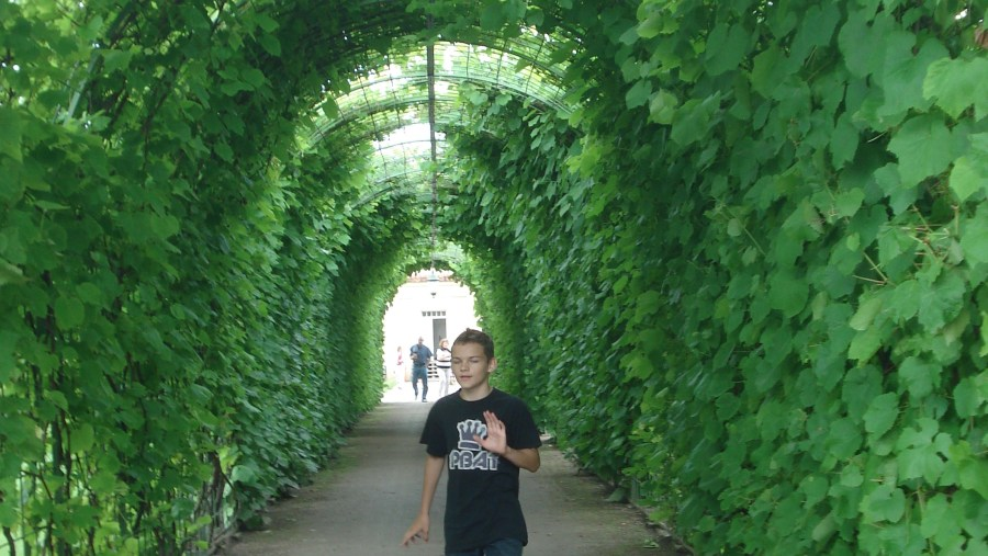 Garden of Rundale palace