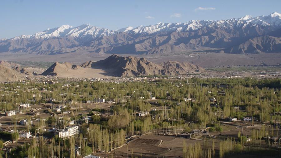 Leh City view