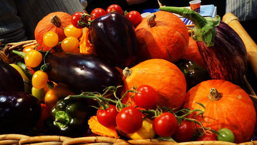 Wonderful Fruits