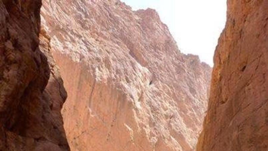 Camel Trips Morocco
