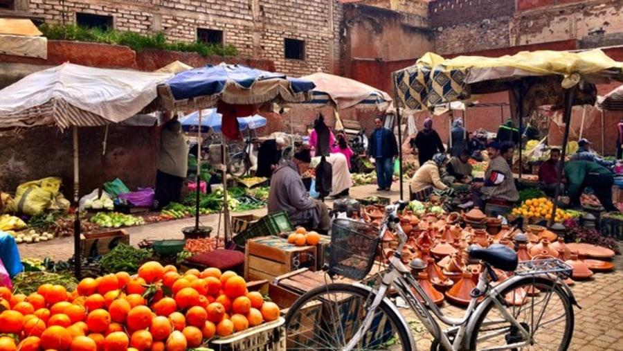 visit medina in Marrakech