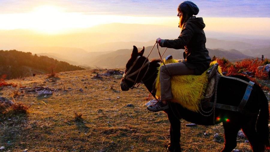 Mule Caravan Riding in Berat