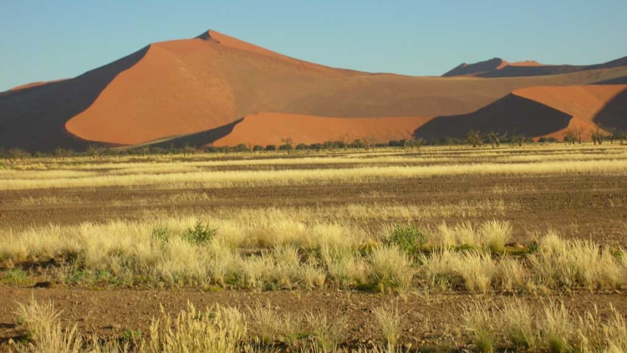 Magic Dunes of Sossusvlei
