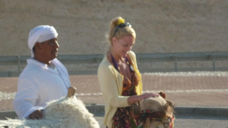Camel driving license