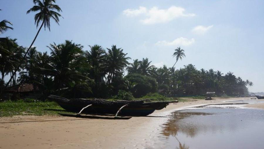 Beautiful Holidays in Sri Lanka with Damith and Sam/Прекрасные Новогодние каникулы на Шри-Ланке с Дамитом и Сэмом.