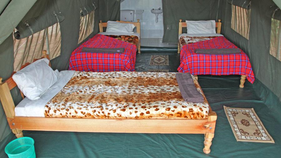 Triple Room- Fisi camp