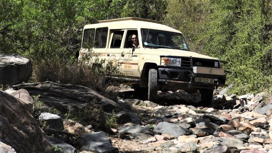 Alan Tours 4 x 4 Safaris, Kabouga section Addo Elephant National Park