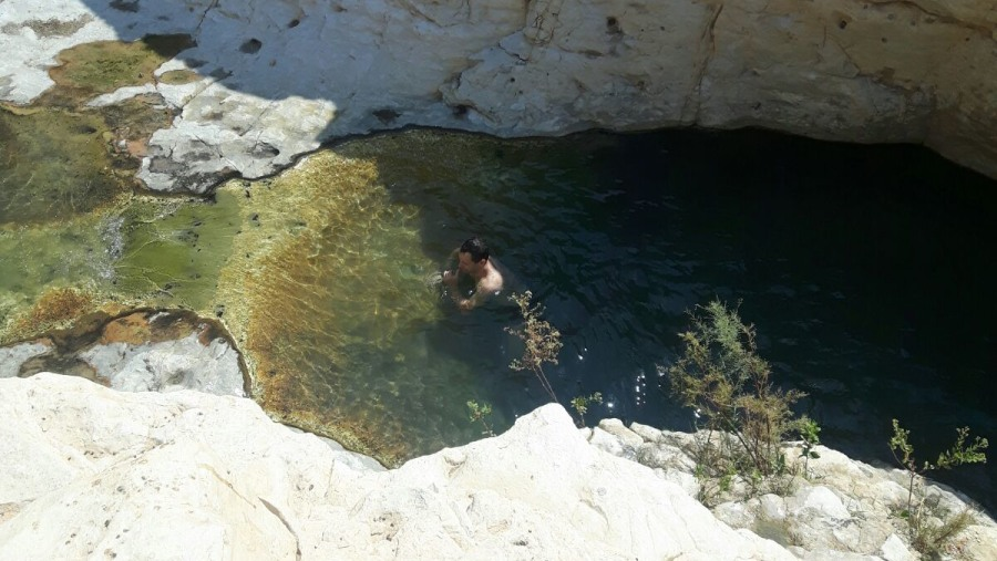 Arugot Oasis