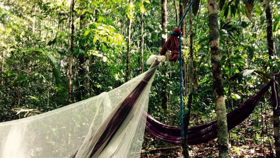 Sleeping in Hammocks in the Brazilian Rainforest