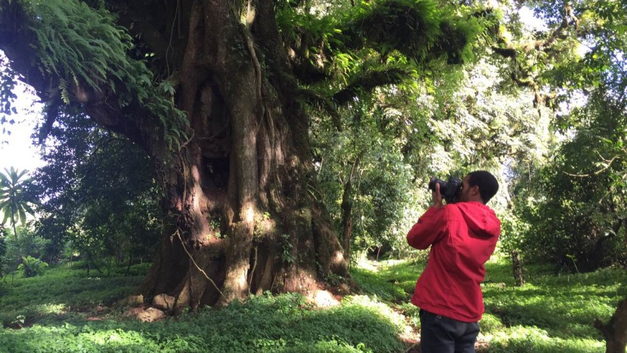 Photographing Exprience Mammals, Birds, Flora and some many to do In Bale Mountains