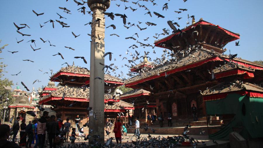 #Sightseeing #Tour #Nepal