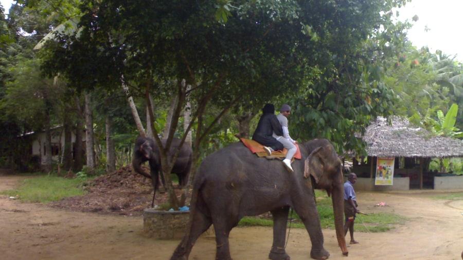 Sri Lanka Tour-10days/9Nights