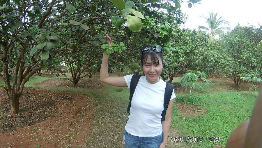 Best Tour Guide in Myanmar