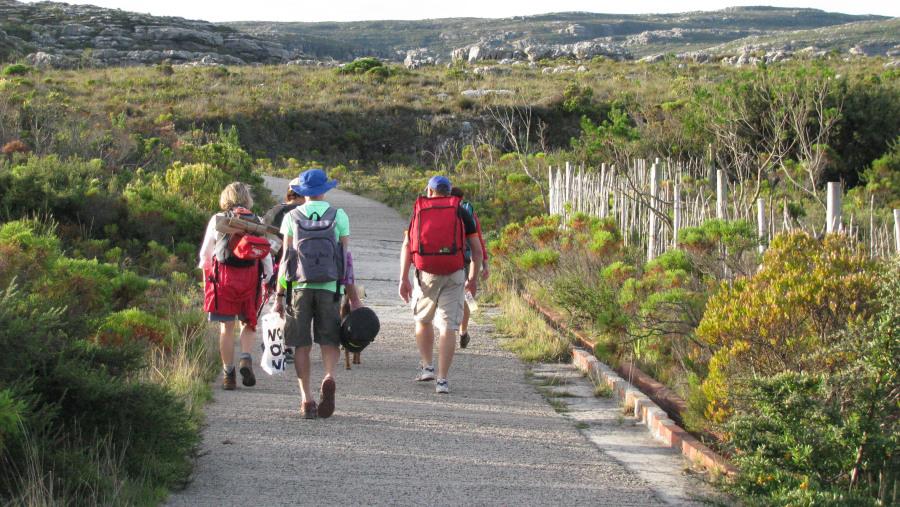 Hikers descending Constantia Nek hike