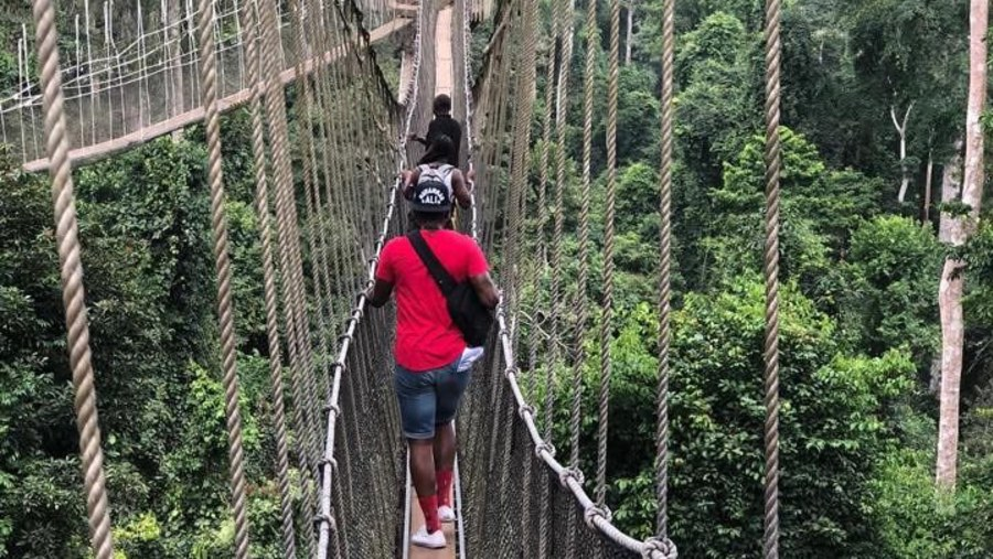 A canopy walk over at the Kakum National Park