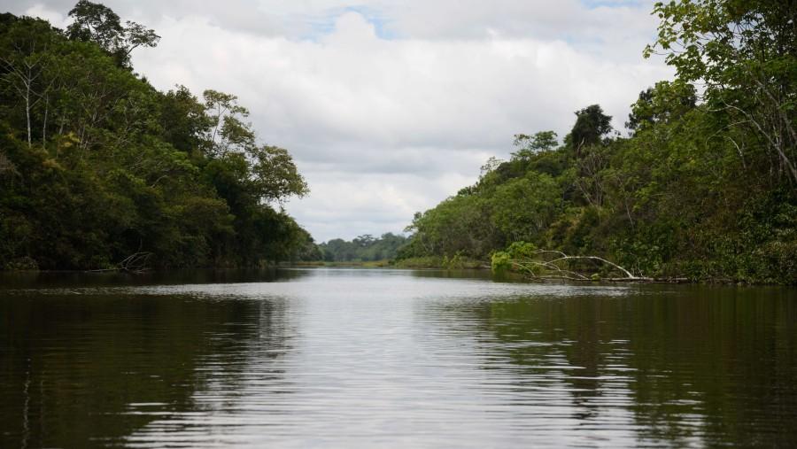 Black Water River