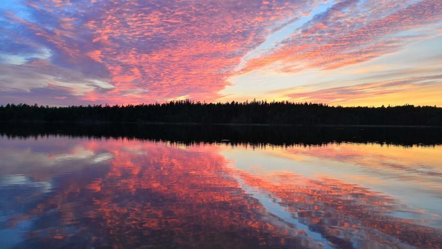 True Nature Sweden Tours
