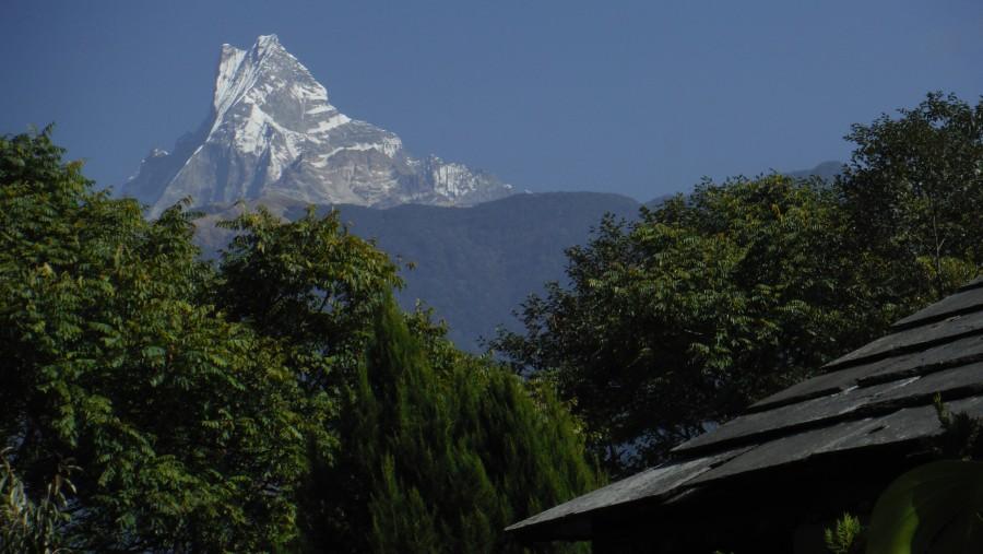 Mt. Fishtail seen from Gandruk village