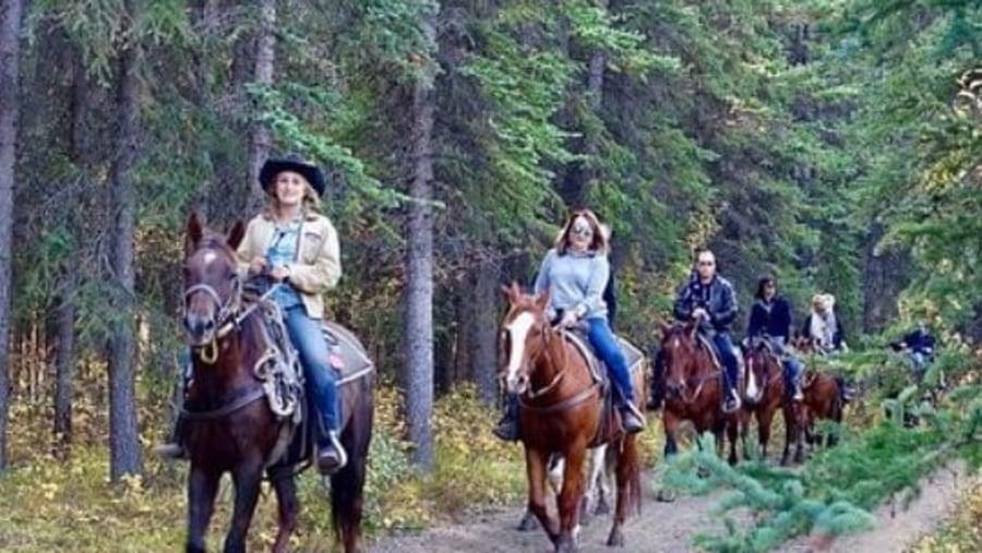 Winelands on Horseback