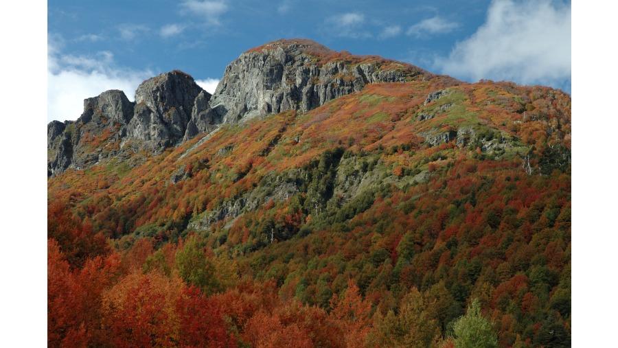 Autumn colors on Las Peinetas
