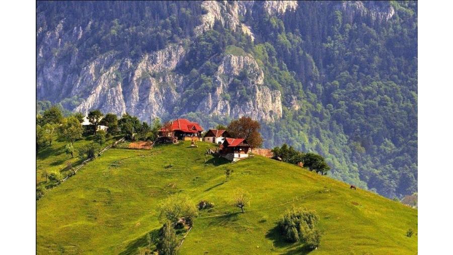 Vida nas montanhas