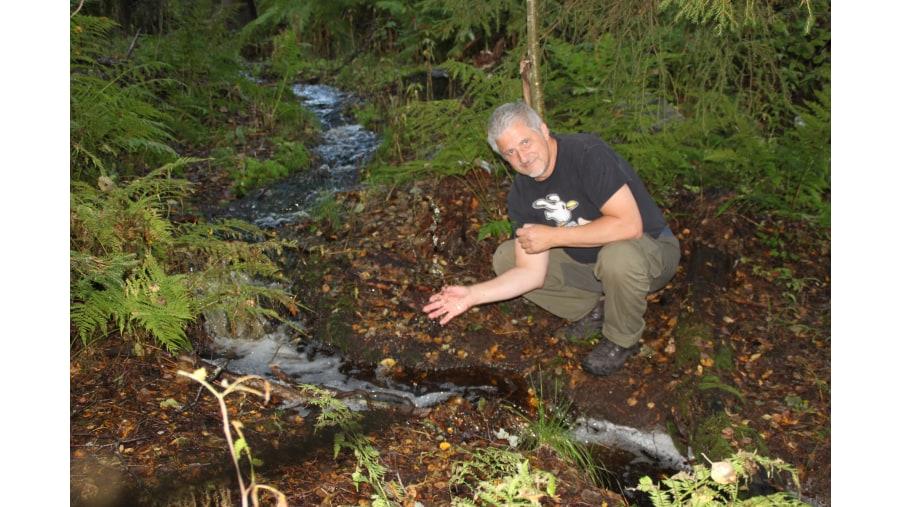 Mushroom and Wilderness Tours