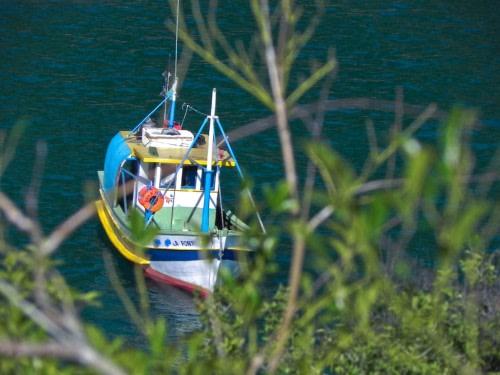 local boat ride