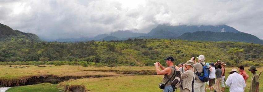 Tourists at Tarangire National Park