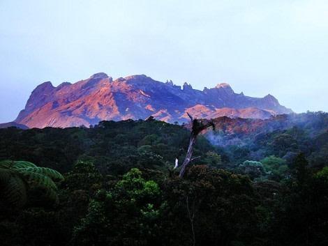 Natural view