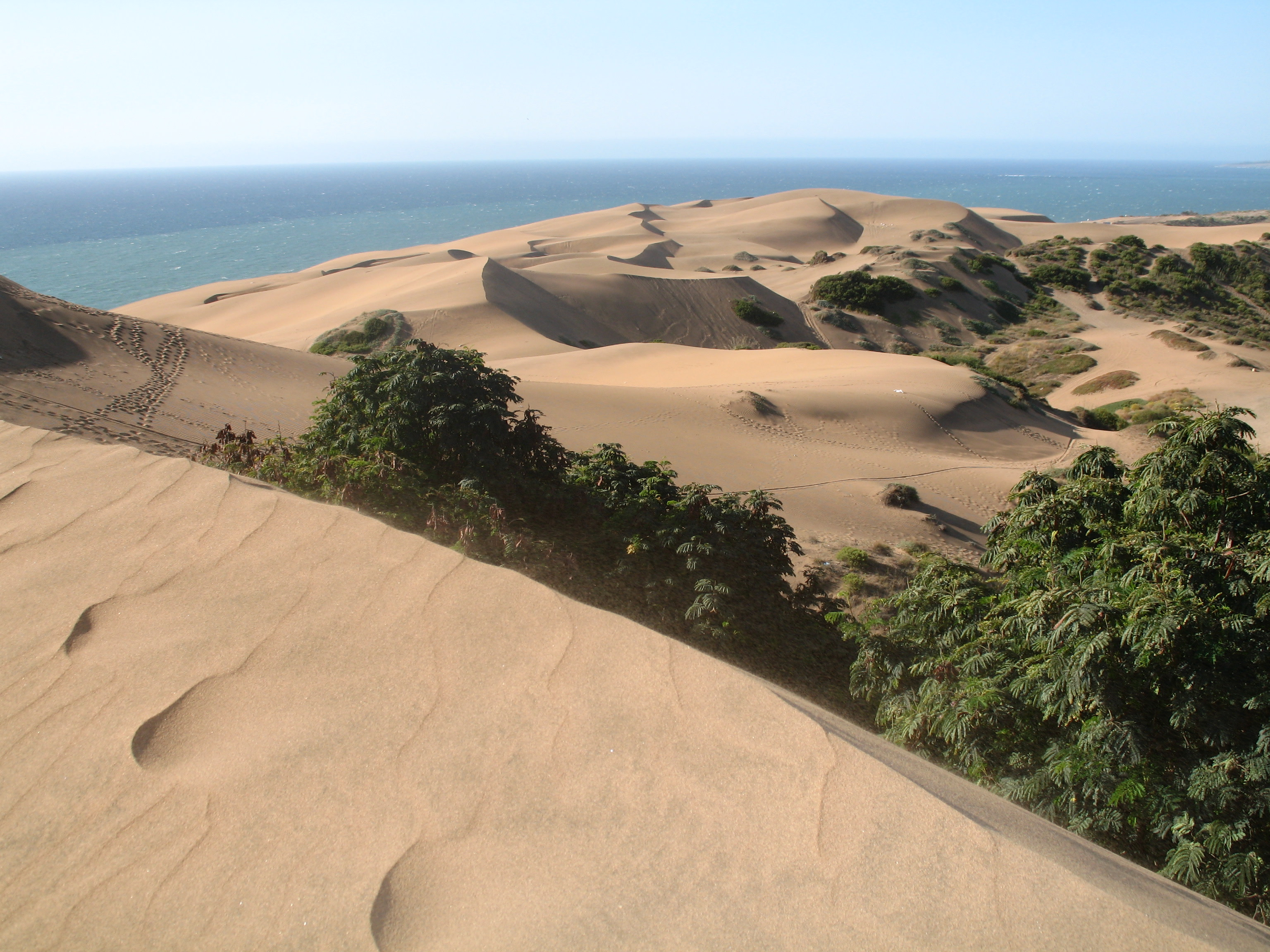 High sand dunes of Concon