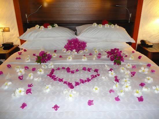 A Special Honeymoon