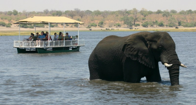 Elephant crossing to the Islands